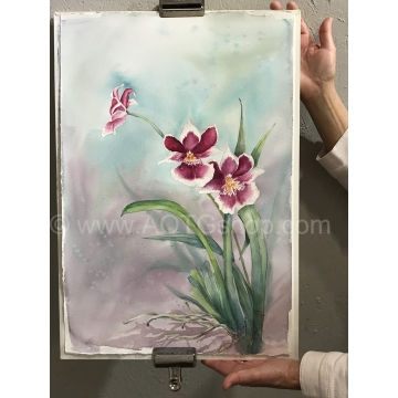 """Miltonia Orchid"" Original Watercolor by Sonja Hamilton (Local Pick-Up Only)"