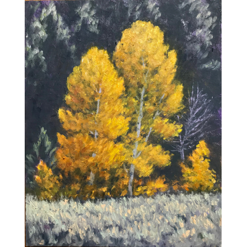 """""""Two Autumn Aspen"""" Original Oil Painting by Jane Welles (Available for Shipping or Local Pick-Up)"""