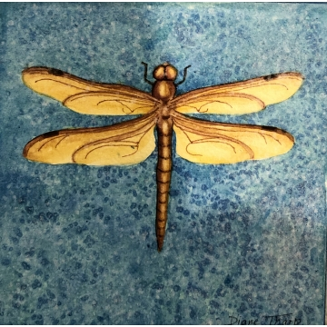 Blue Dragonfly Original Watercolor Painting by Diane Tharp (Available for shipping or local pick-up )