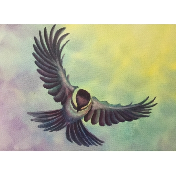 """Soaring"" Original Watercolor Painting by Diane Tharp (Available for shipping or local pick-up )"