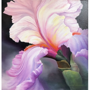 "Iris Oil Painting ""Musette Suite"" by Sandy Delehanty (Free U.S. Shipping or Local Pick-Up)"