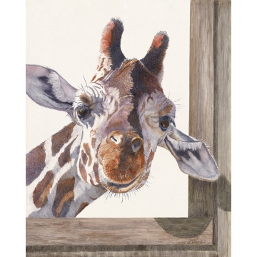 "Giraffe Giclee Print on Canvas ""Anybody Home?"" by Sandy Delehanty (Available for Shipping or Local Pick-Up)"