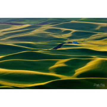 """""""Grain Bins"""" Photograph on Aluminum by Doug Parks (Local Pick-Up Only)"""