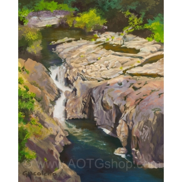 Hidden Falls Original Oil Painting by Sylviane Giacoletto (local pick-up only)