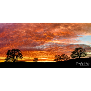"Original Image on Metal ""Valley Edge Sunset"" by Doug Parks (Local Pick-Up Only)"