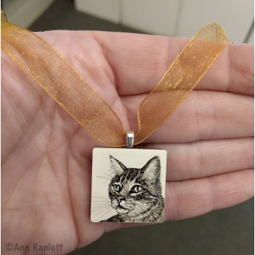 Miniature Original Cat Drawing by Ann Ranlett (Available for Shipping or Local Pick-Up)