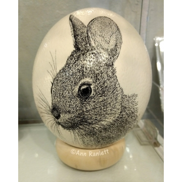 Ostrich Egg with Rabbit Drawing by Ann Ranlett (Local Pick-Up Only)