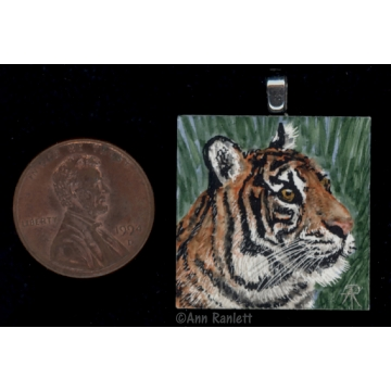 Miniature Original Tiger Drawing by Ann Ranlett (Available for Shipping or Local Pick-Up)