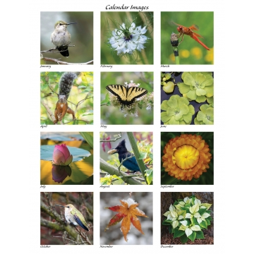 Special Events Birthdays and Anniversaries Calendar by Photographer Susan Stoll (Available for Shipping or Local Pick-Up)