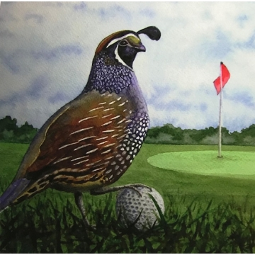 """In the Rough"" - Matted Giclee Print of a Watercolor Painting of a Quail, by Diane Tharp (Available for Shipping or Local Pick-Up)"