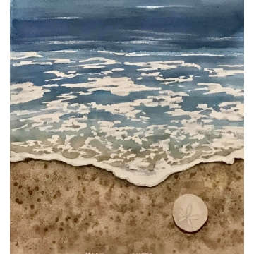 "Original Framed Watercolor Painting ""Sand Dollar"" by Diane Tharp (Available for shipping or local pick-up )"