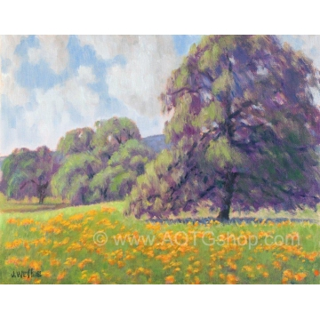 "Original Oil Painting ""California Poppies VII"" by Jane Welles (Available for Shipping or Local Pick-Up)"